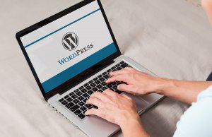 Новый WordPress будет поддерживать пользовательские ссылки